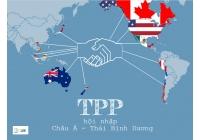 TTP là gì những điều cần biết về tổ chức này