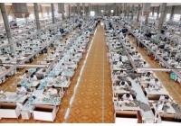 Lợi thế của các công ty dệt may khi Việt Nam gia nhập TTP